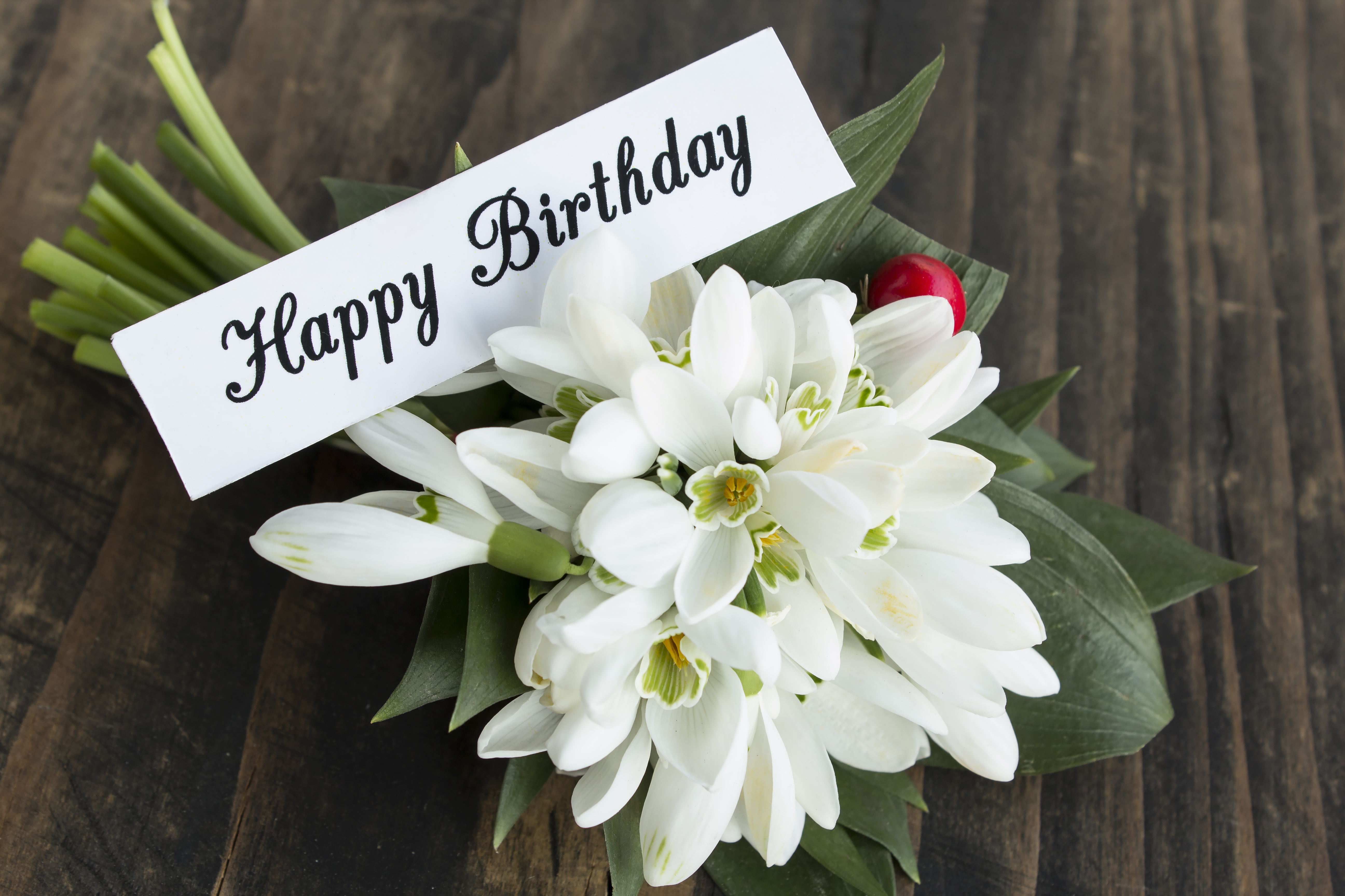 Happy birthday card with bouquet of snowdrops bowls new zealand happy birthday card with bouquet of snowdrops izmirmasajfo